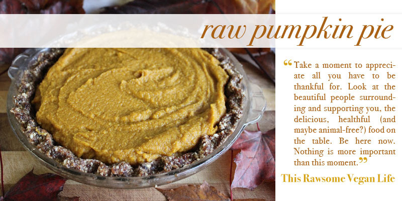 raw-vegan-recipes-desserts-thanksgiving-pumpkin-pie-healthy-holiday-tips-thisrawsomeveganlife