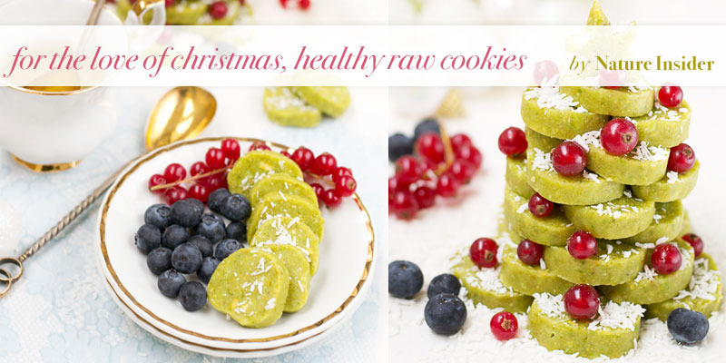 tThe Global Girl Top 5 Raw Vegan Christmas Dessert Recipes: Healthy Cookies by Nature Insider