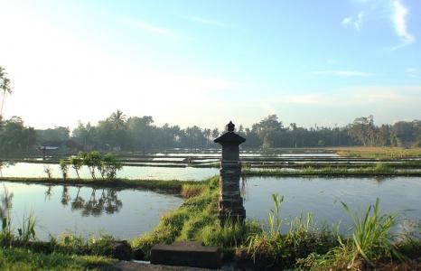 (English) On My Way to Ubud