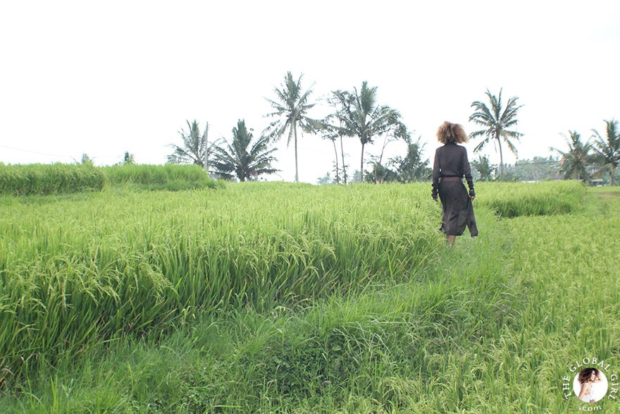 The Global Girl Travels: Ndoema takes a stroll through Ubud's archetypal rice paddy fields in Bali, Indonesia.