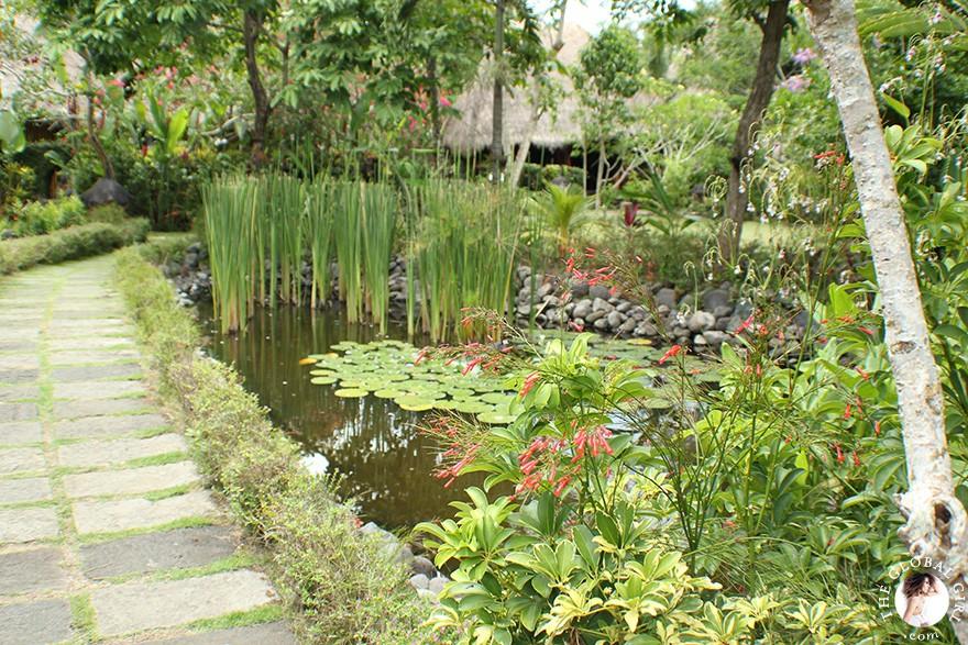 The Global Girl Travels: Holistic Healing at luxury eco-friendly wellness resort in Ubud, Bali.
