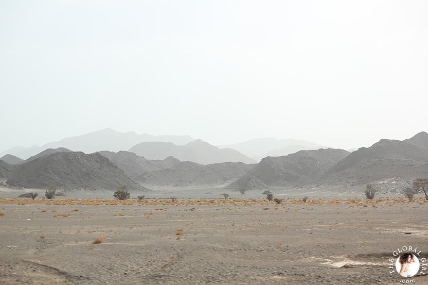 The Global Girl Travels: Camels in the Sahara desert, Egypt.