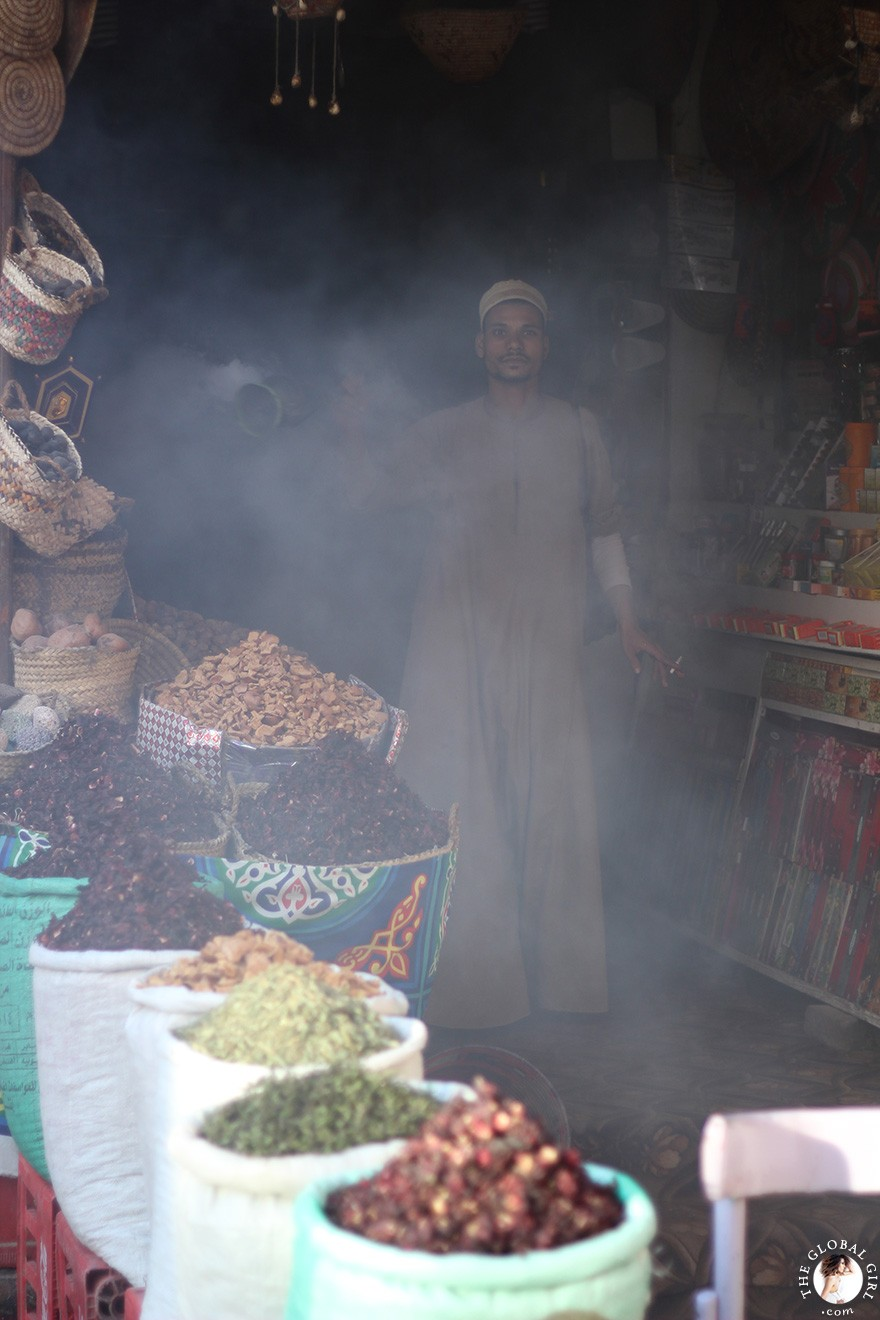 The Global Girl Travels: Sharia el Souk in Aswan, Egypt.