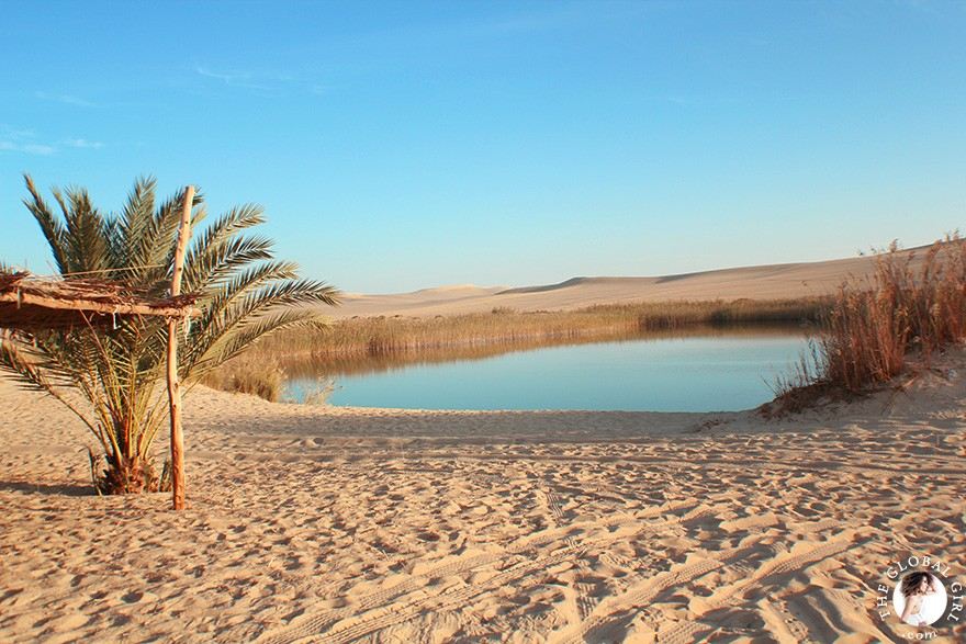 The Global Girl Travels: Desert safari at the beautiful freshwater lake at Bir Wahed, a striking natural landmark on the edge of the Great Sand Sea, a 72,000 km² sand desert region in North Africa stretching between western Egypt and eastern Libya.
