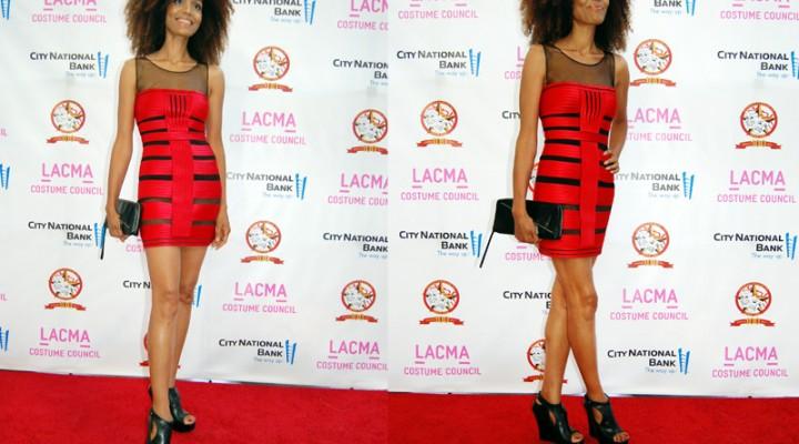 LACMA Costume Council gala
